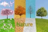 Nature Montage