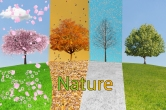 Nature Montage
